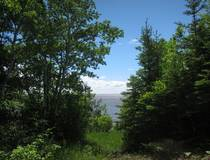 30 Clearwater Cove 5.76 acres Lakefront land