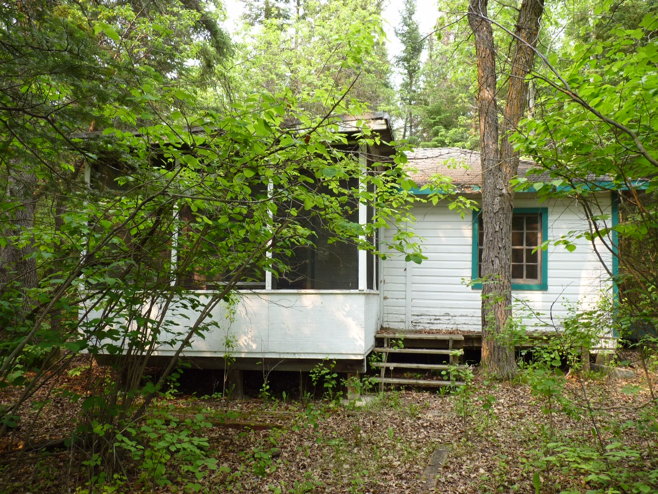 Sold: Seasonal Cottage: 116 8th Ave on double lot Victoria