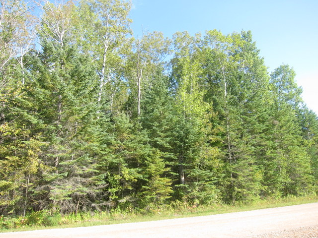 Sold vacant lot 19 grand pines drive grand pines golf course manitoba canada ateah realty - Pinne dive system ...